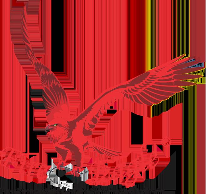 Fireeagle